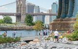 Brooklyn Bridge Park © Julienne Schaer, NYC & Company